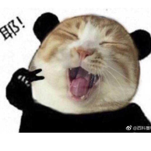 工口少女_