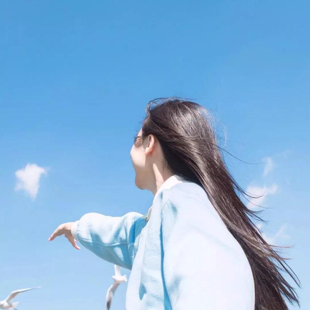 __Wings__