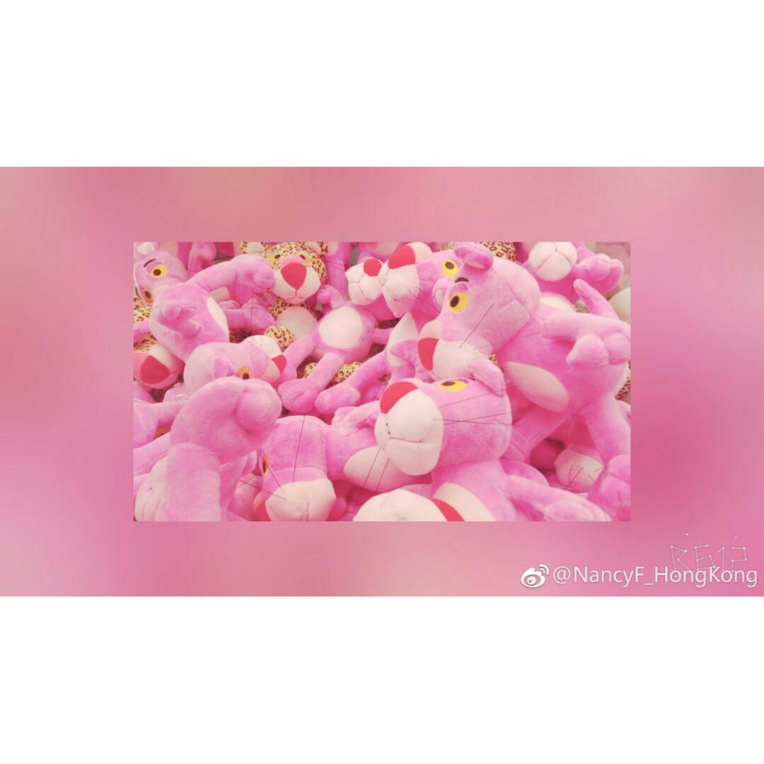 pinkpigF_HongKong