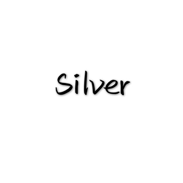 高垠湘Silver