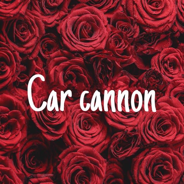 Carcannon