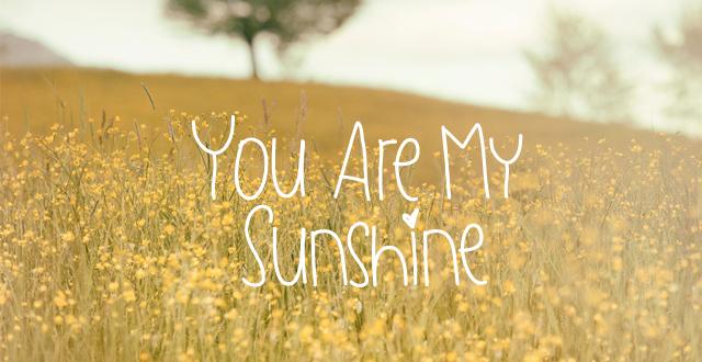 全部              you are my sunshine my only