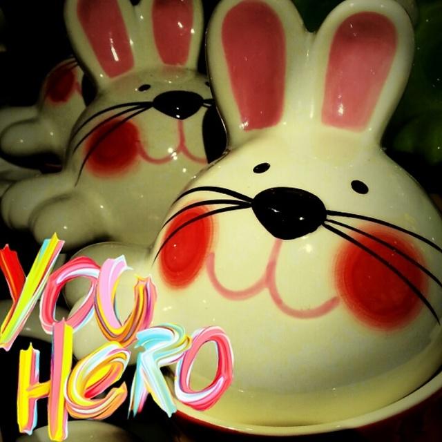 HOLA,恋物癖,杯具兔