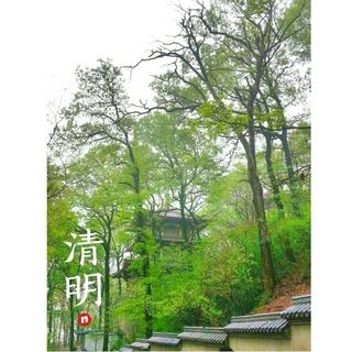 AllenTeng's photos