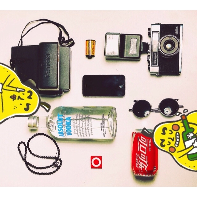 Polaroid,SEA-GULL,Kodak,绝对伏特加,Coca Cola