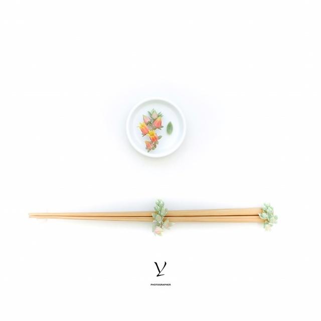 无印良品,MUJI,竹筷,多肉花