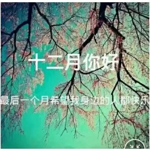 MRNSA_的照片