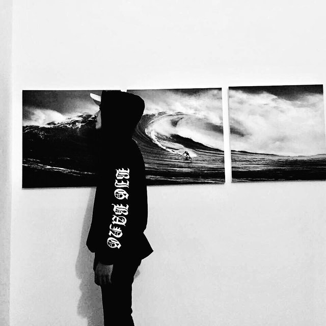-Sharks的照片