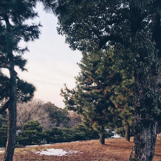 Chri_Lee的照片