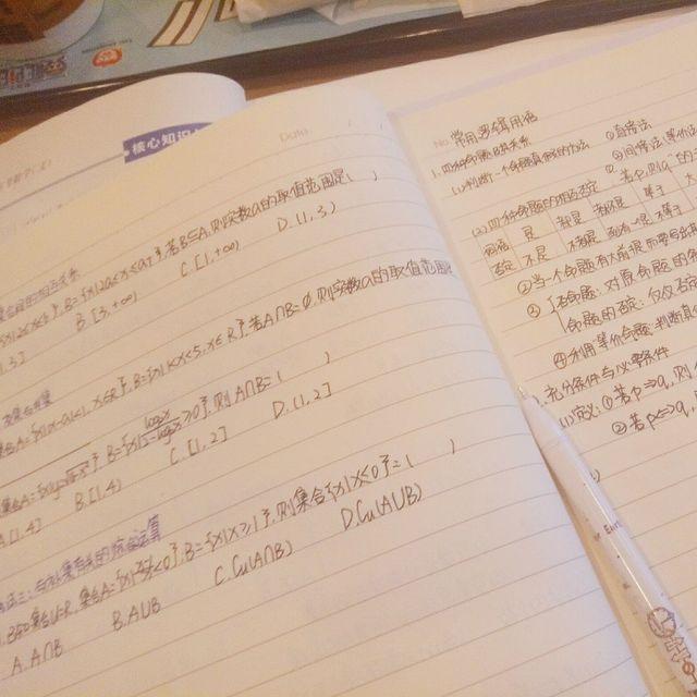 岳明辉女朋友的照片