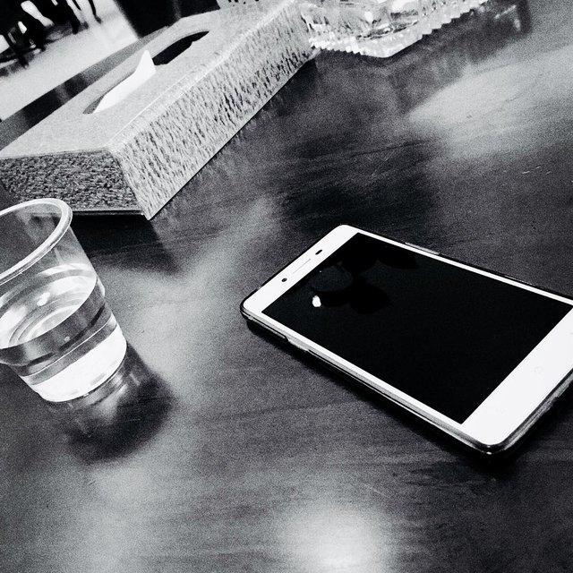 Homkai的照片