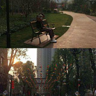 Zhiaien_'s photos