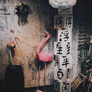 LuYu-JIA's photos