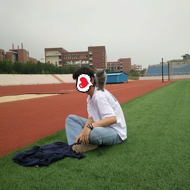 运动场,操场,school