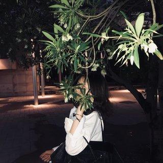 -33宝贝's photos