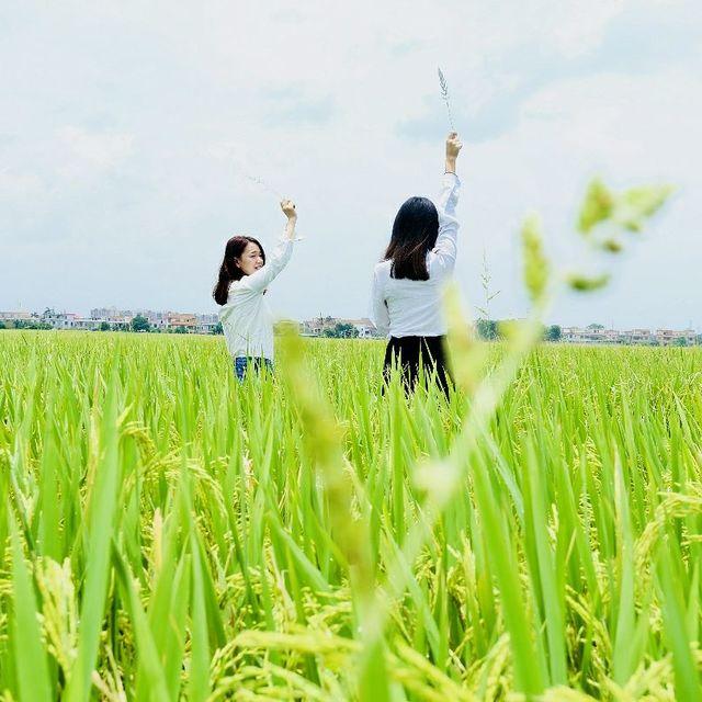 清少-江江的照片