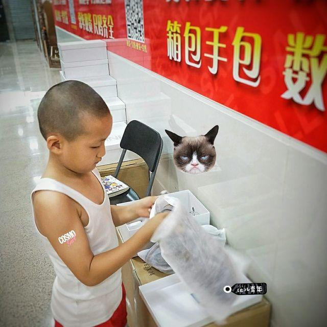 Arthur尤-穿靴子的貓的照片