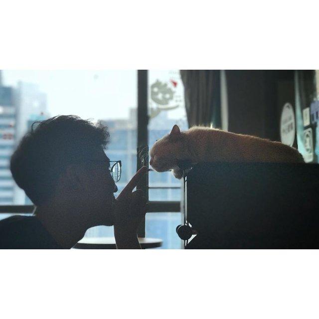 豬higher_的照片