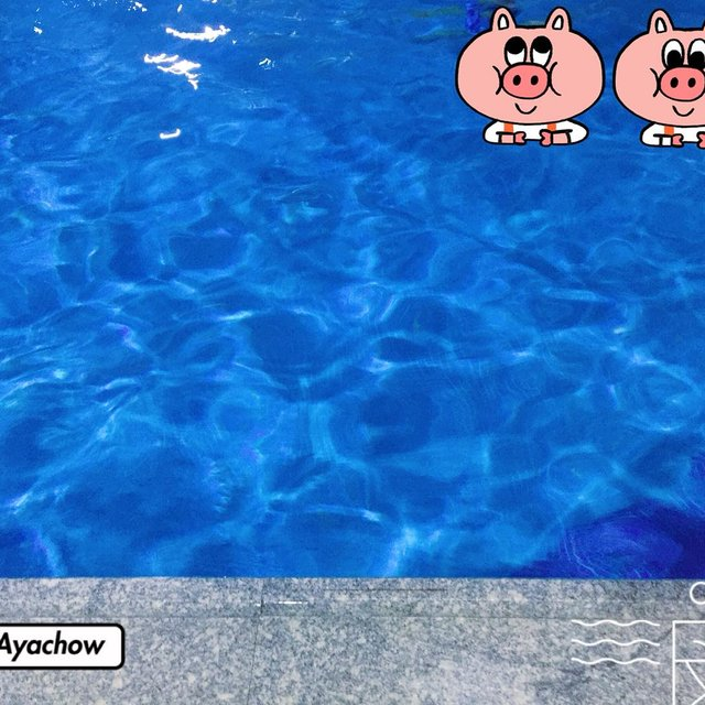 Ayachow的照片