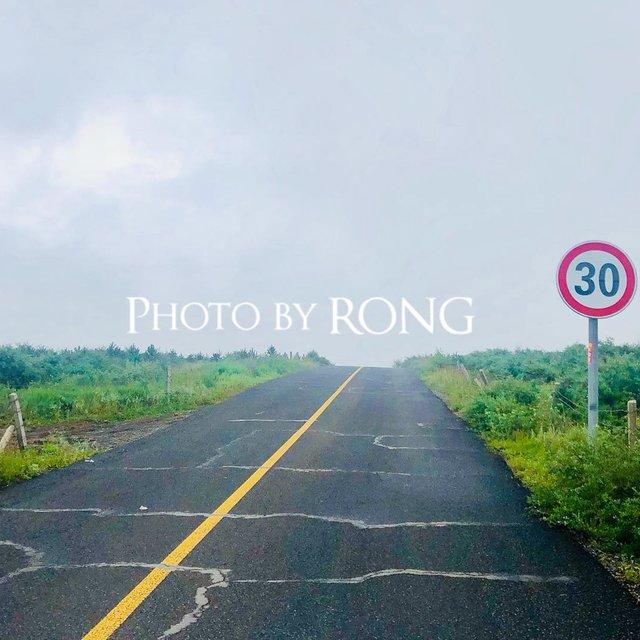 升仙花-Rong的照片