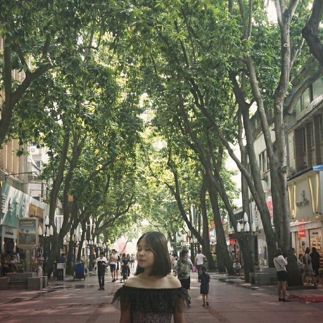 惠州,hello