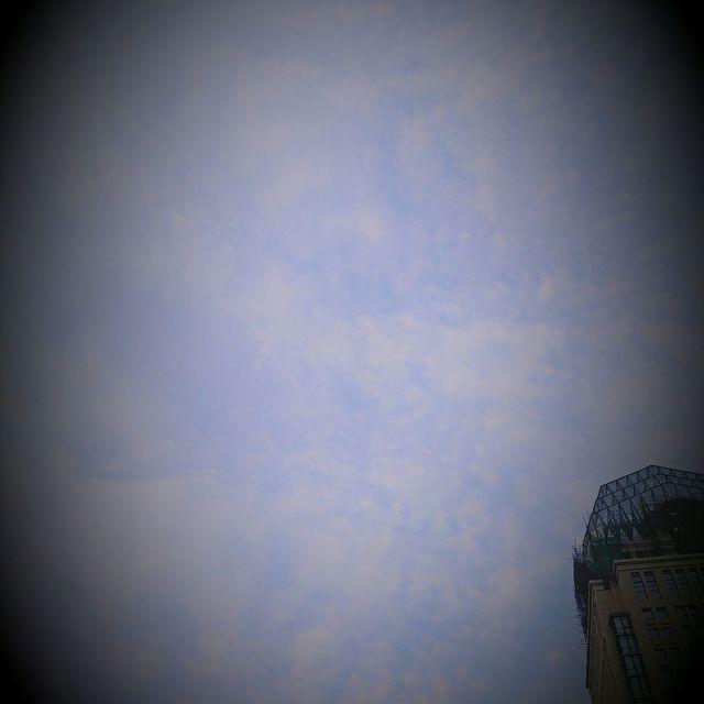 D_Eagle的照片