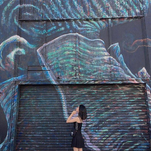 小恐龙龙的照片