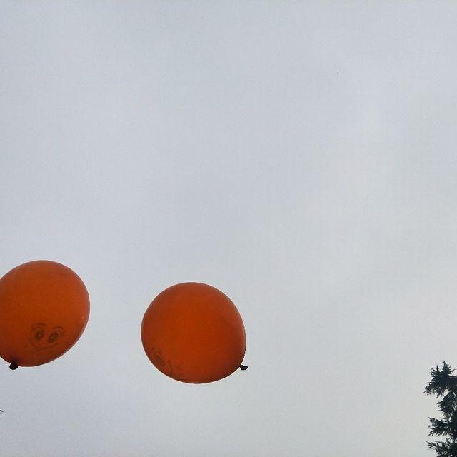 气球君,你好