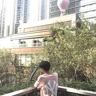 裴新木's photos