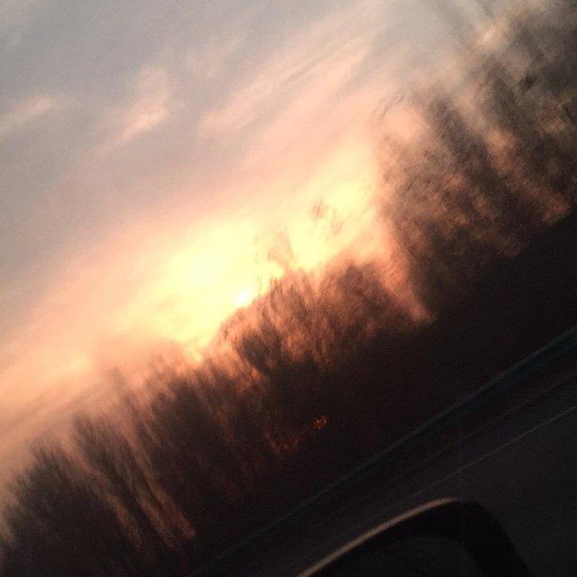 大天--的照片