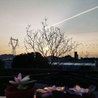 清少-江江's photos
