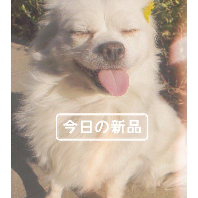 HLING-小玲子的照片