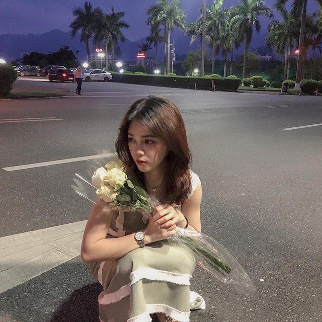 植物,马路,香槟玫瑰,花