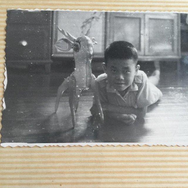 韓胖子啊的照片