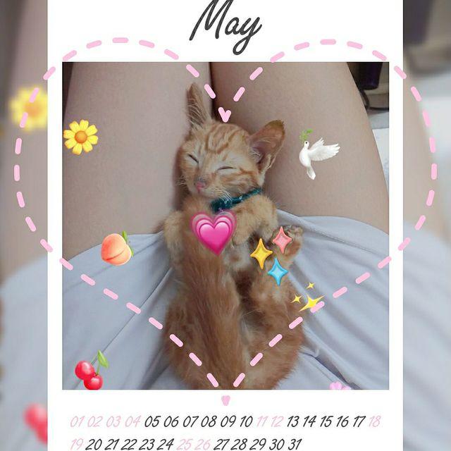 May_y_的照片