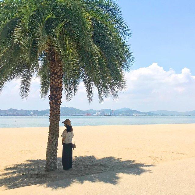 Kooyi蕉的照片