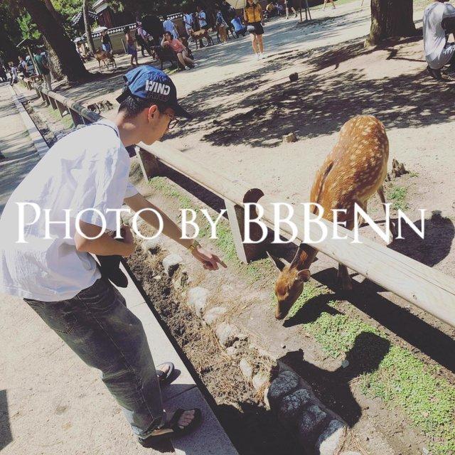 阿BBBeNn的照片