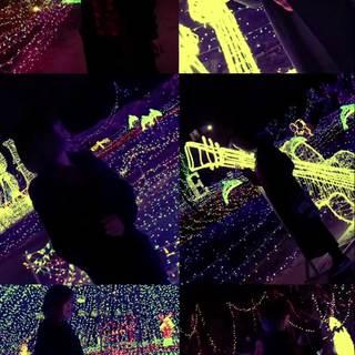 sunshine_角色's photos