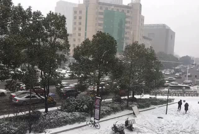 Youbeiqin的照片